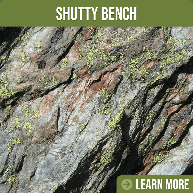 Shutty Bench